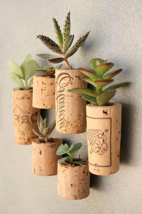 Растения във винени тапи.