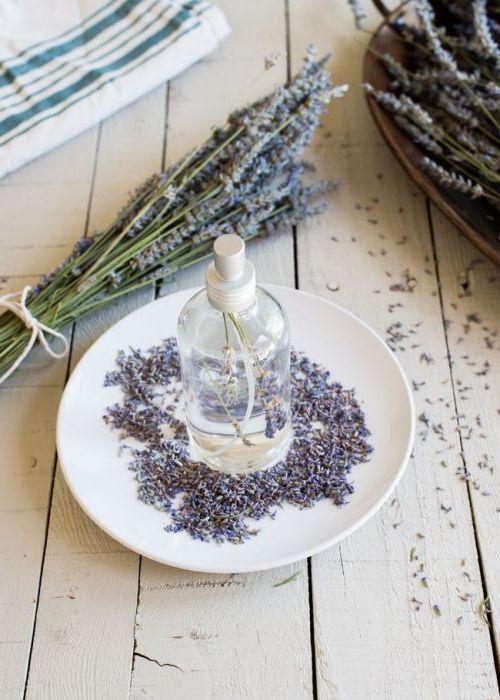 Лавандулата притежава невероятно приятен и успокояващ аромат, който със сигурност освежава стаите в къща или апартамент.