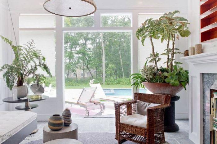 Rośliny poprawiają jakość powietrza, którym oddychamy, a także ożywiają pomieszczenia.