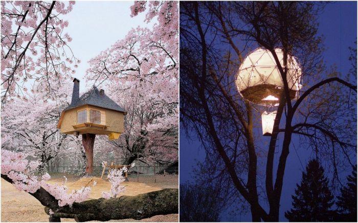 Впечатляващи къщи от дървета.