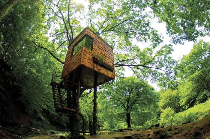 Прекрасна къща с дървета от японския архитект Такаши Кобаяши.