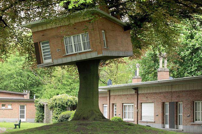 Оригинальная скульптура дома на дереве.