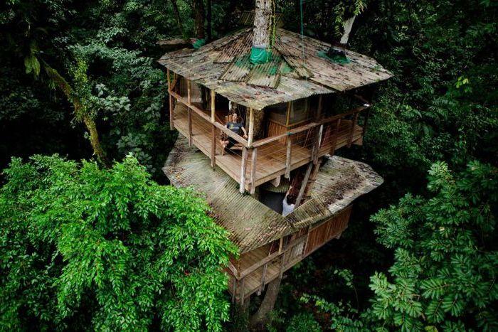 Еко-имот Finca Bellavista сгушен сред дърветата в тропическите гори на Коста Рика.