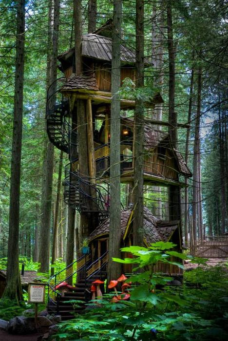 Прекрасна триетажна къща с дървета.