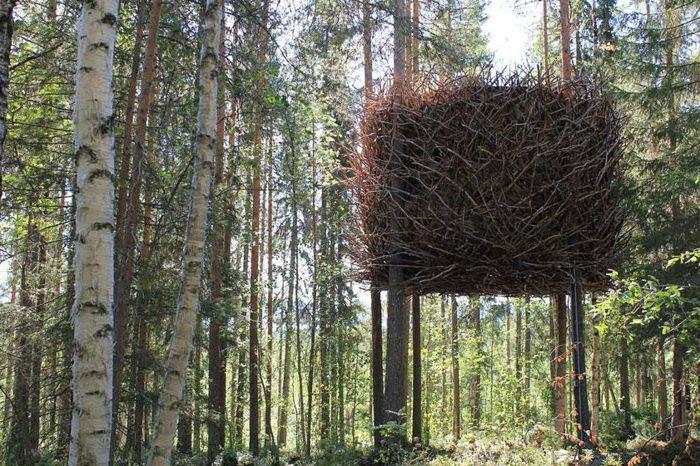 Къща с дървета под формата на огромно птиче гнездо.