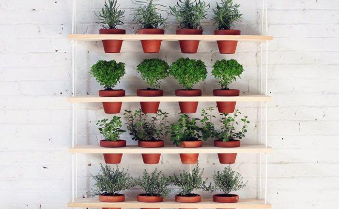 Рафтове за домашни растения.
