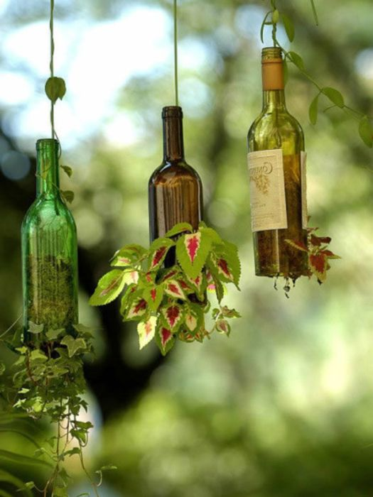 Необичайни вертикални, висящи саксии за катерещи растения.