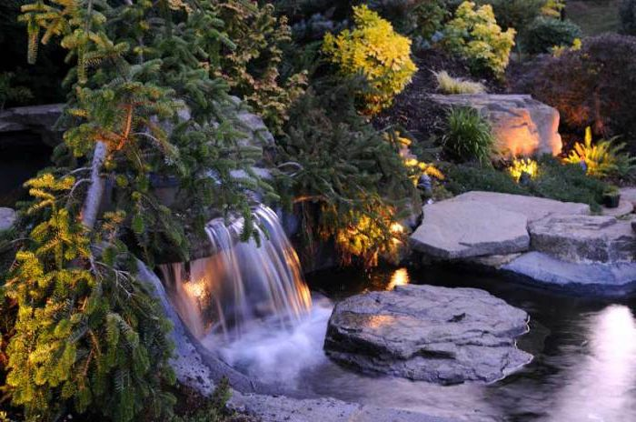 Великолепно градинско езерце.