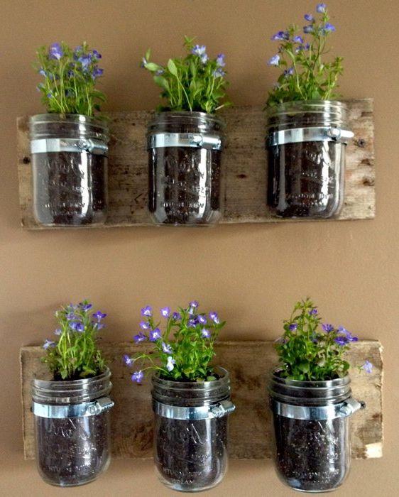 Идея номер 1: стайни растения