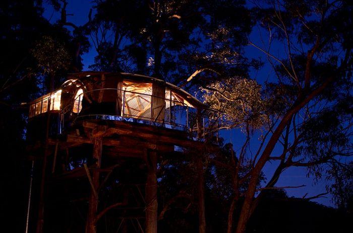 Wollemi Wilderness & rsquo; s Tree House est une cabane dans les arbres dans la forêt tropicale.