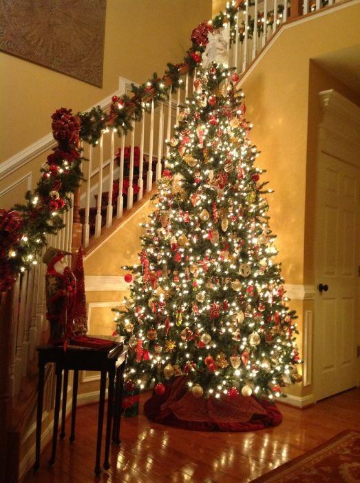 Duże drzewo przy wejściu do domu.