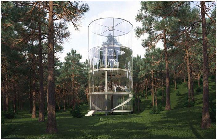 Cylindryczny dom zbudowany wokół drzewa.