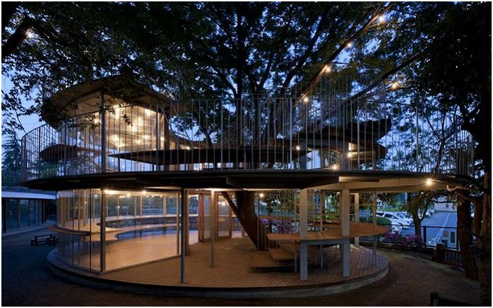Fuji to innowacyjne przedszkole, w którym drzewa są głównymi atrakcjami.