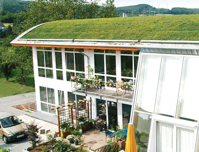 Ekologiczny dom z zielonym dachem.