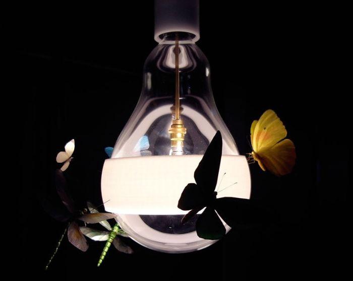 Пеперуди, молци и кончета обграждат крушката.
