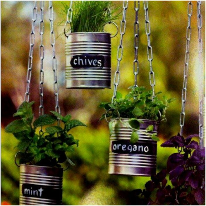 Использовать украшенную баночку можно для выращивания трав и специй.