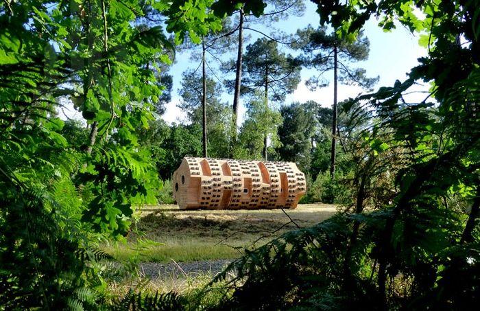 Abri en bois situé dans une zone boisée.