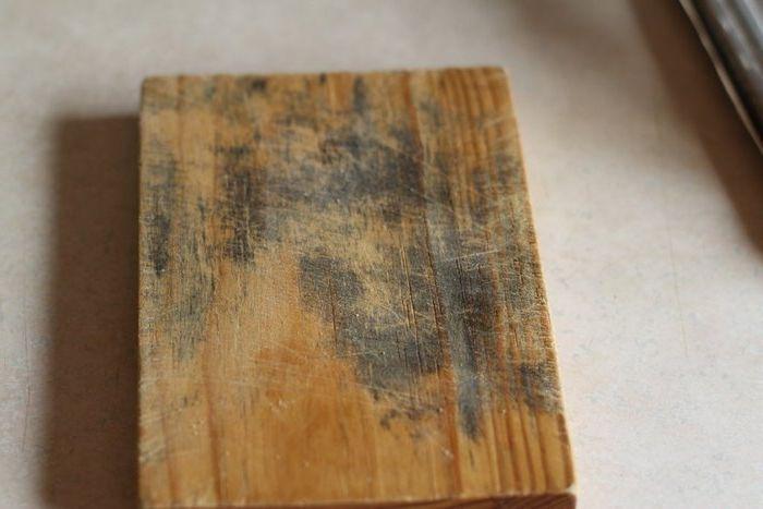 Pine страда най-много от мухъл