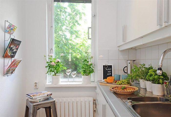 Мини градина в кухнята
