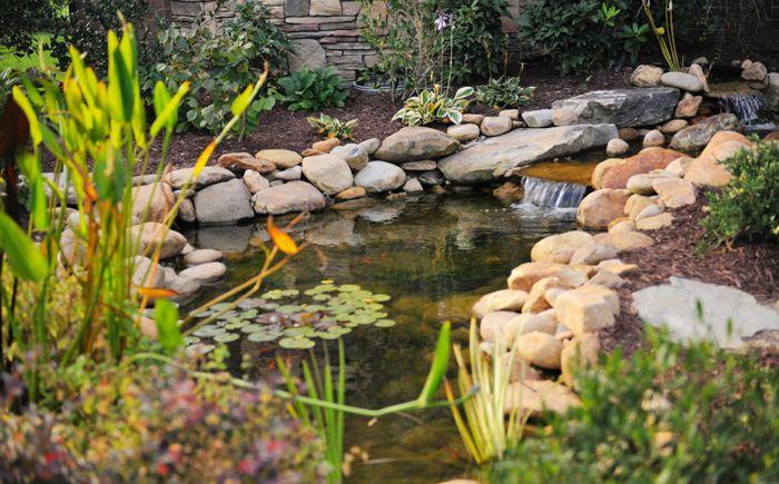 Езерце с риба