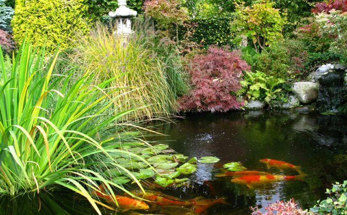 Езерце в японска градина