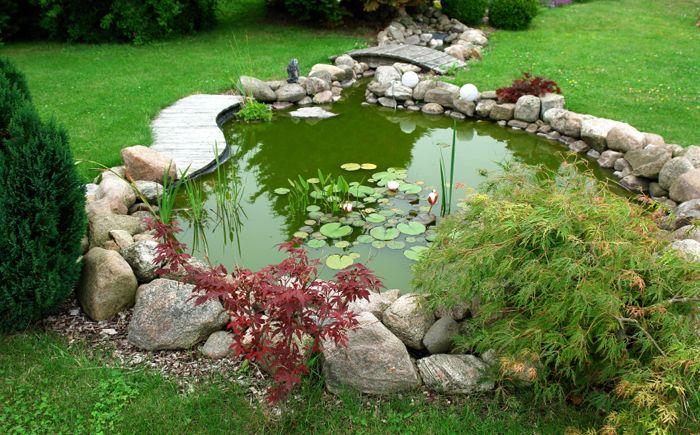 Зелено езерце в градината