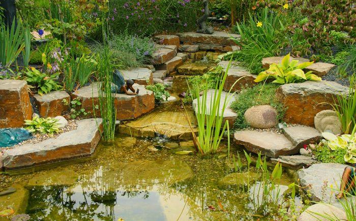 Зашеметяващо езерце с кристално чиста вода