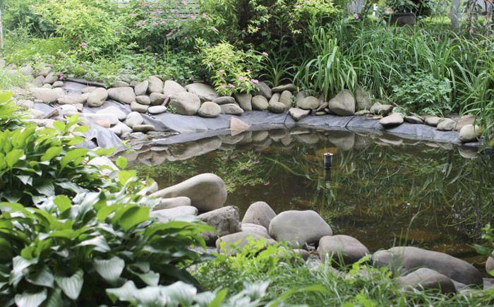 Малко езерце в градината с чешма