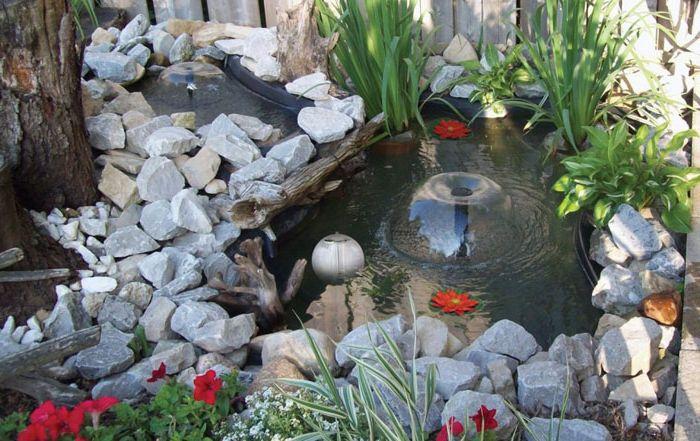 Езерце в градината