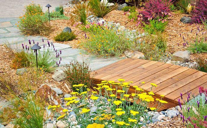 Малък мост от градински пейзажи и разсадник на Sage