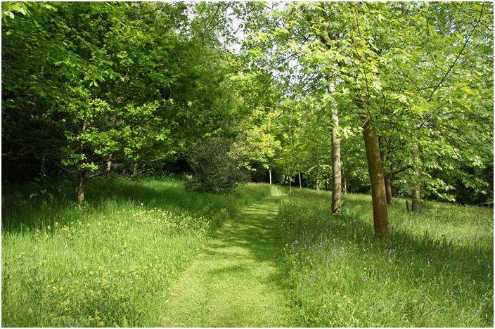 Път по тревата