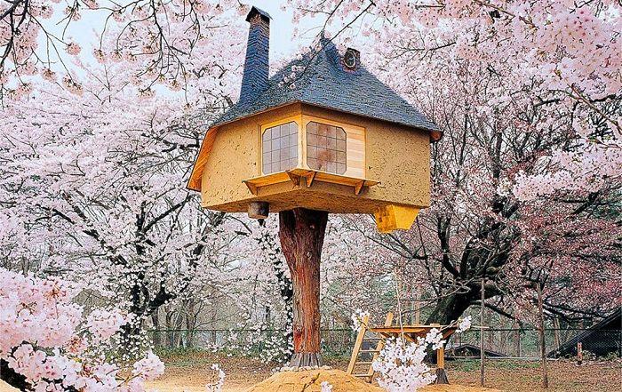 Treehouse Tetsu е къща с дървета за чайни церемонии.