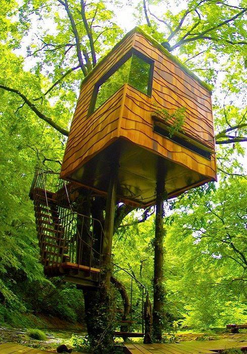 Nasu Treehouse to domek na drzewie.