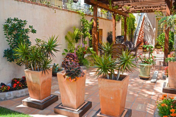 Градина - саксии за цветя - най-добрите идеи-222