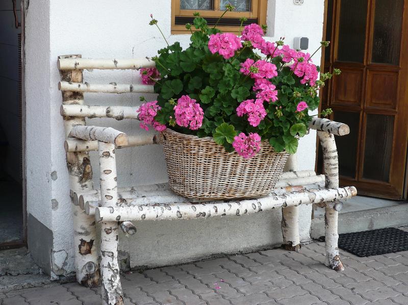 Градина - саксии за цветя - най-добрите идеи-888