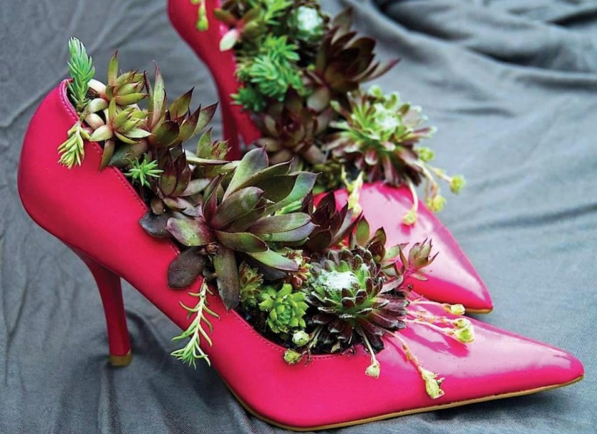 Градина - саксии за цветя - най-добрите идеи-999-12