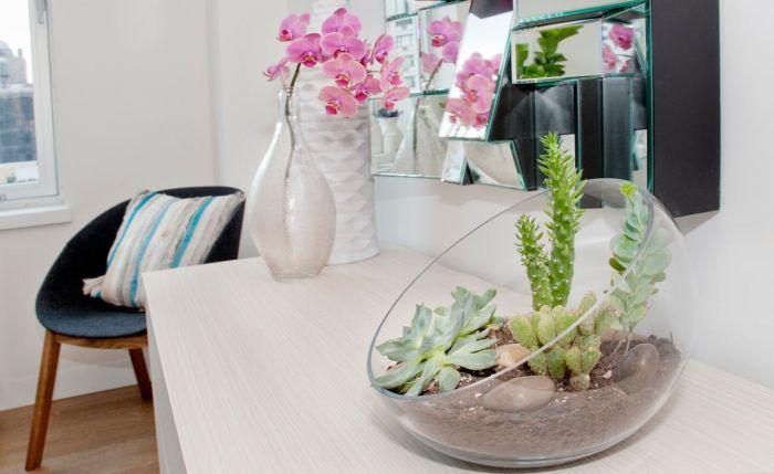 Растенията придават уют на домашната атмосфера.