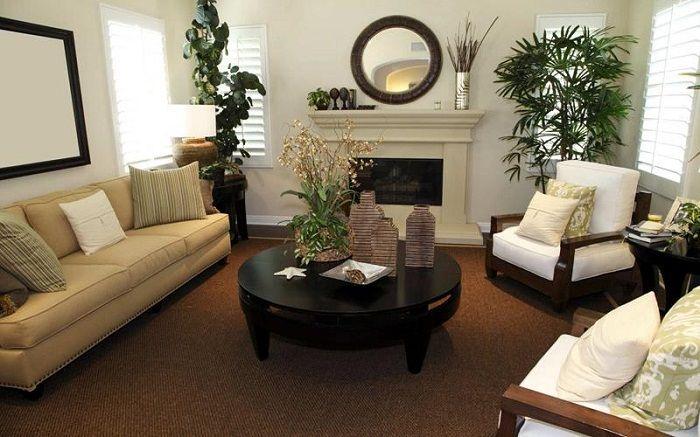 Разделить пространства в крохотной гостиной возможно при помощи комнатных цветов.