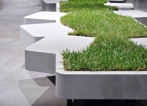 Газонная трава в скамье
