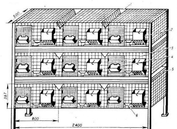 Klatki dla królików DIY: rysunki, rozmiary i zdjęcia