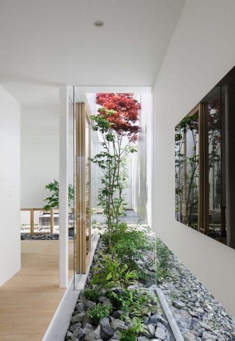 Находкой для любого дома станет просто отличное преображение интерьера за счет размещения мини-сада.