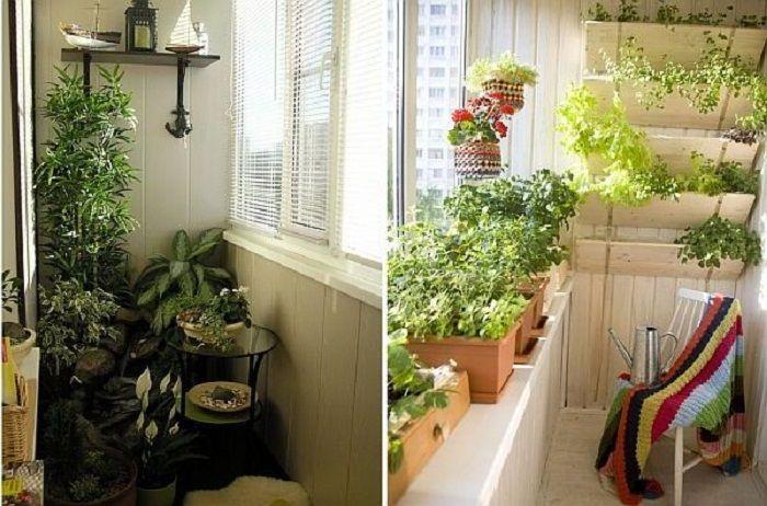 Удачные примеры трансформирования балкона в мини-сад.