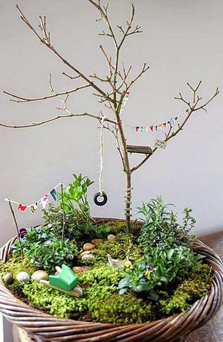 Възможно е да се създаде просто непредсказуема атмосфера в стая у дома, благодарение на подредбата на градина в саксия, което ще освежи и бързо разнообрази интериора.