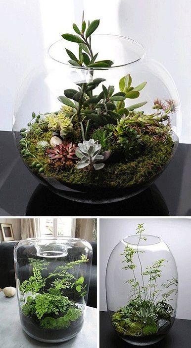 Готин вариант за създаване на мини градина във ваза, какво може да бъде по-добре.
