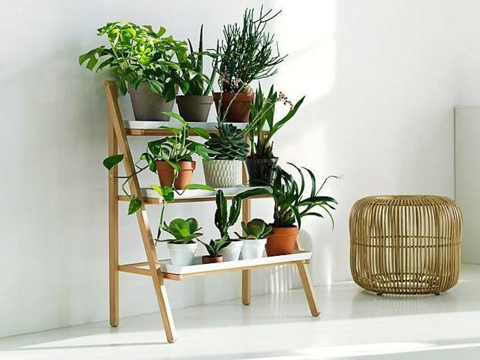 Один из самых лучших вариантов преображения интерьера при помощи размещения мини-сада дома.