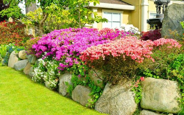 Мини розова градина