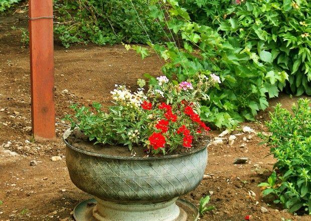 Гума за цветя