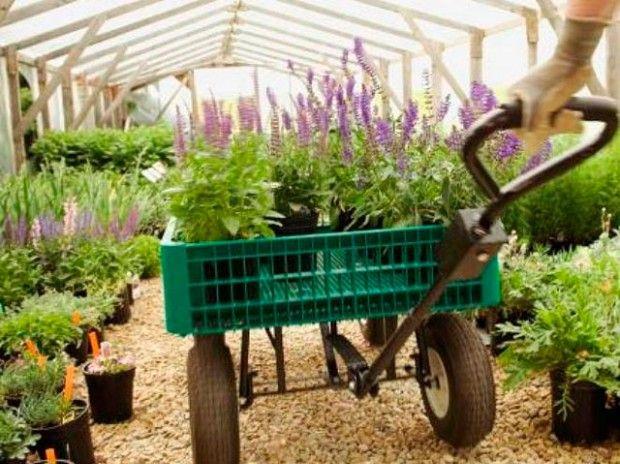 15 organiske landskapsteknikker