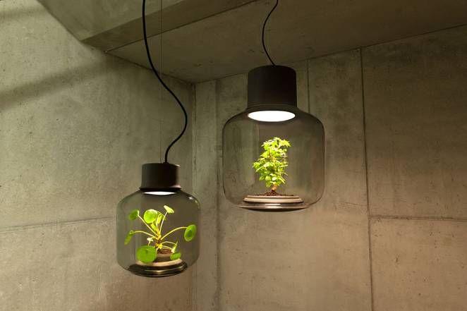 Необычные стеклянные светильники