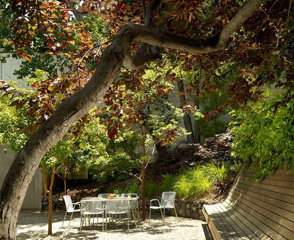 Banc en bois sous un arbre dans le jardin